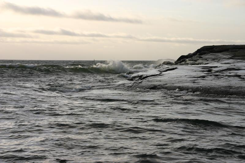 meritaimenen kalastaminen