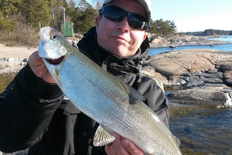 siian kalastus